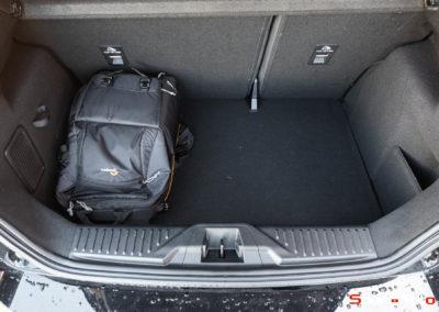 Ford-Fiesta-ST-Bob-1